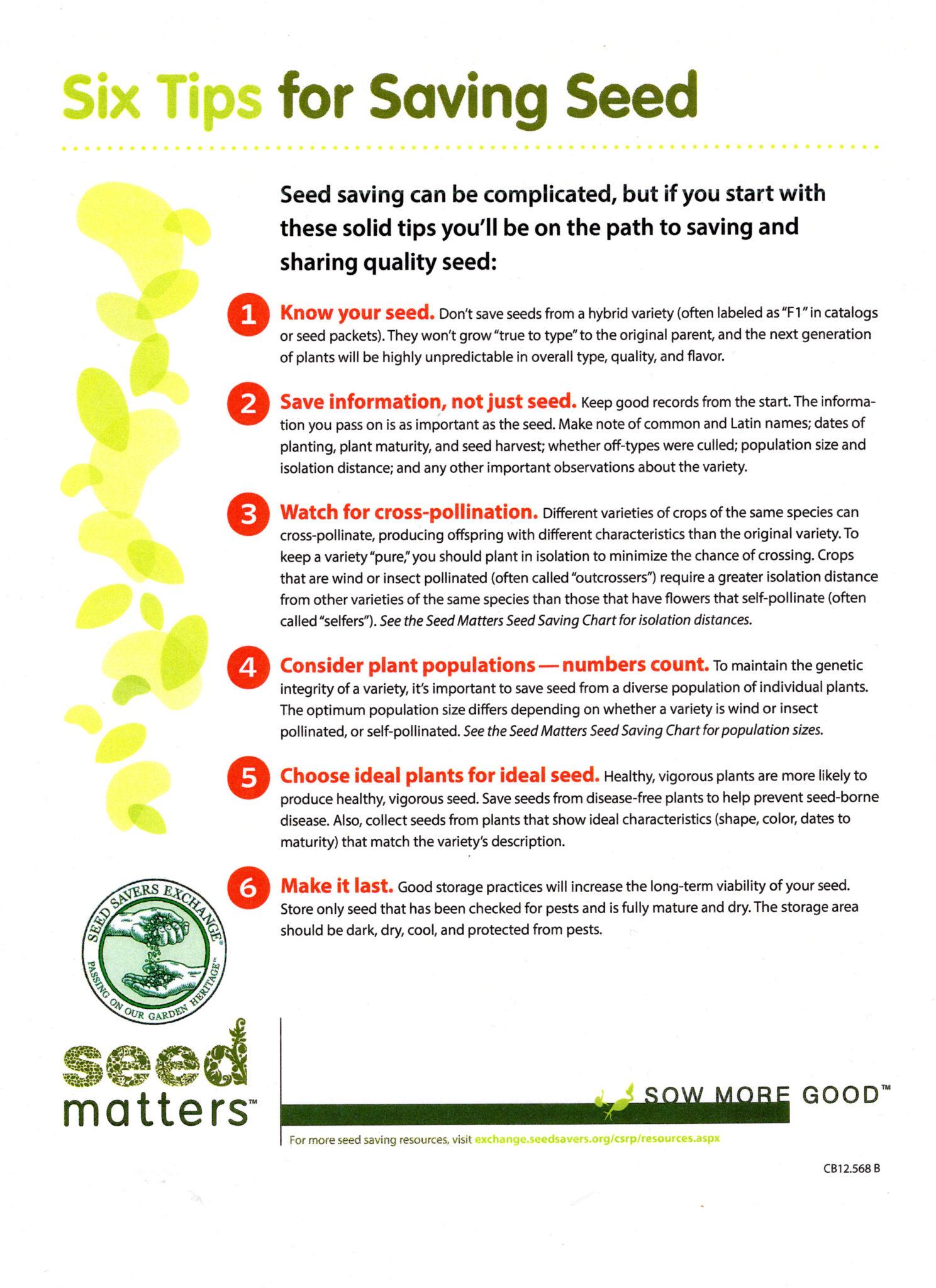 Seed gardening information new york permaculture exchange seed saving seed savers exchange seed saving american community gardening association seed saving workshop jude hobbs nvjuhfo Images